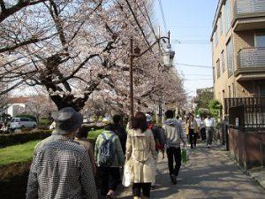 桜見ウォーキング HP用(4.4)